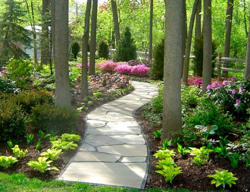 Landscaping Styles & Inspiration